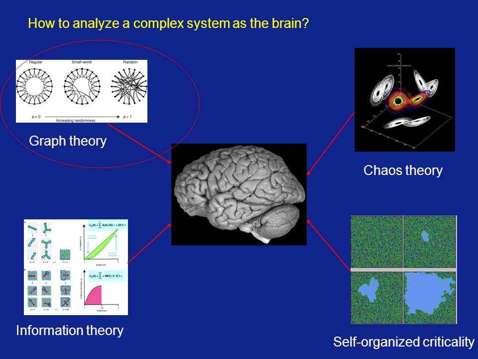 How to analyze a complex system as the brain? Graph theory Information theory Self-organized criticality Chaos theory