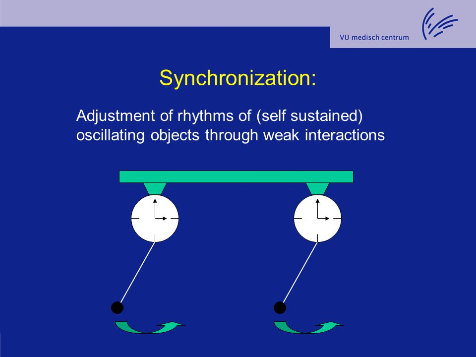 Synchronization: Adjustment of rhythms of (self sustained) oscillating objects through weak interactions