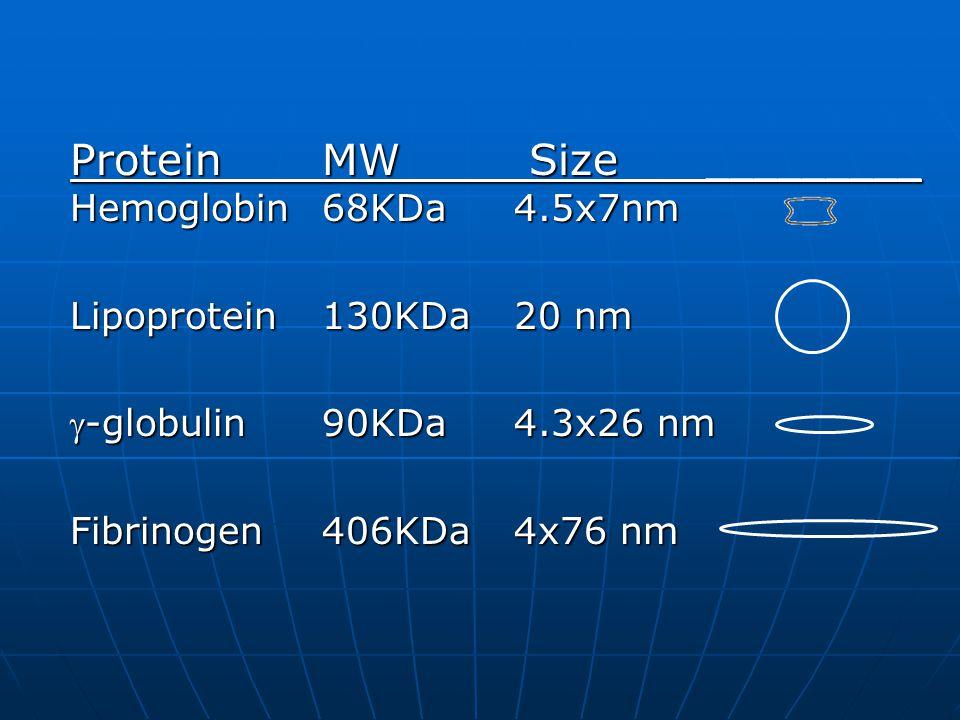 ProteinMW Size _________ Hemoglobin68KDa4.5x7nm ProteinMW Size _________ Hemoglobin68KDa4.5x7nm Lipoprotein130KDa20 nm Lipoprotein130KDa20 nm -globulin90KDa4.3x26 nm -globulin90KDa4.3x26 nm Fibrinogen406KDa4x76 nm Fibrinogen406KDa4x76 nm