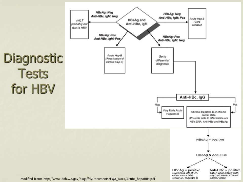 Diagnostic Tests for HBV Modified from: http://www.doh.wa.gov/hsqa/fsl/Documents/LQA_Docs/Acute_hepatitis.pdf