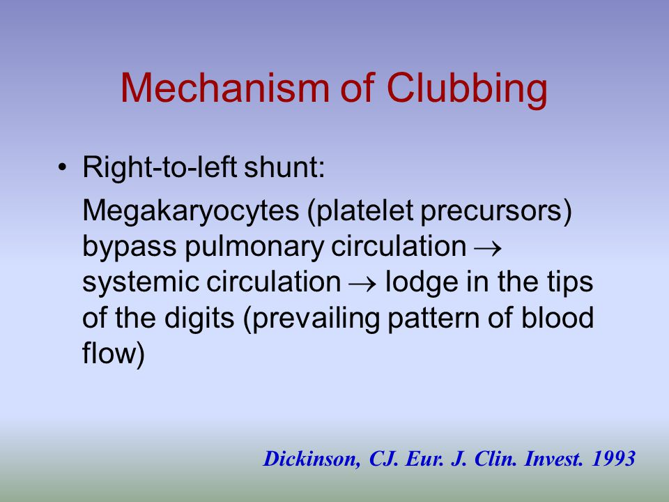 Mechanism of Clubbing Right-to-left shunt: Megakaryocytes (platelet precursors) bypass pulmonary circulation  systemic circulation  lodge in the tips of the digits (prevailing pattern of blood flow) Dickinson, CJ.