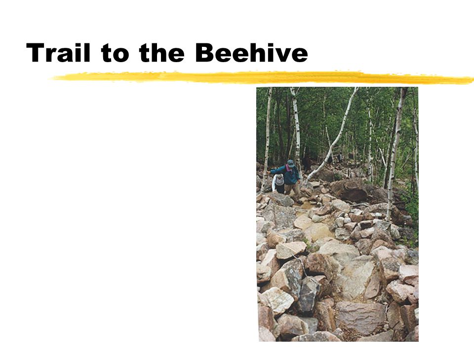 Trail to the Beehive
