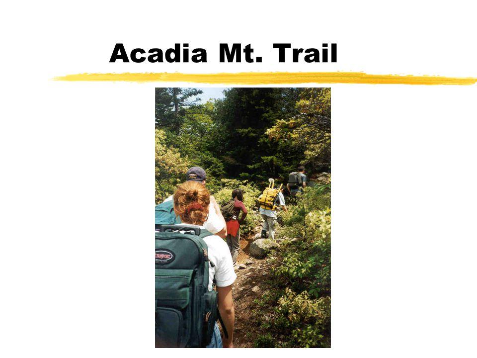 Acadia Mt. Trail