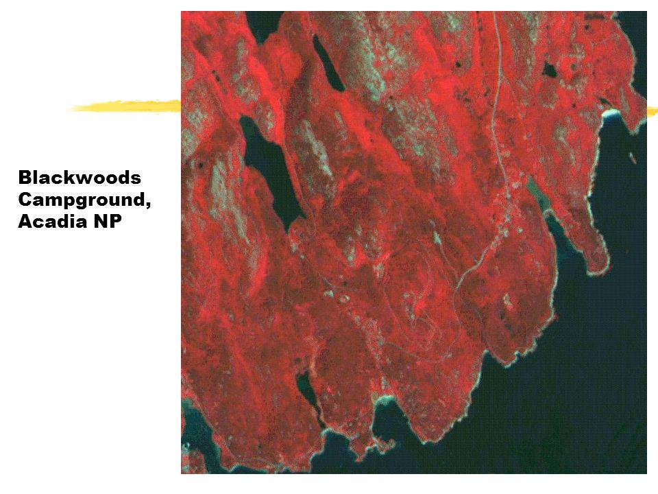 Blackwoods Campground, Acadia NP