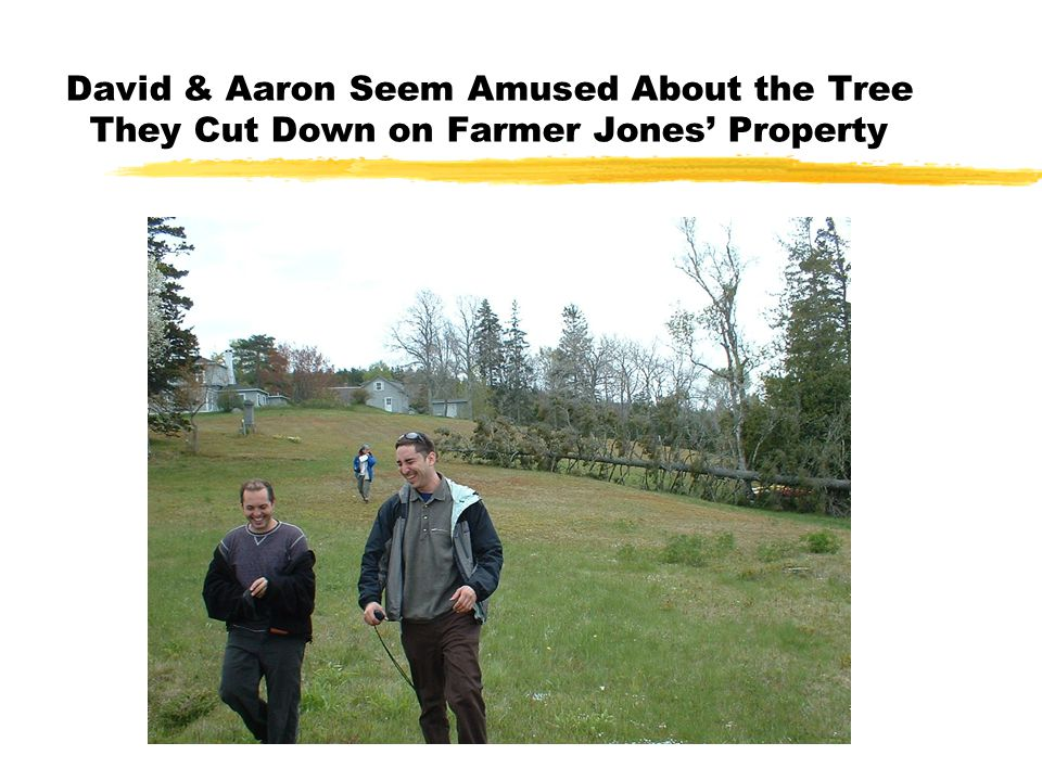 David & Aaron Seem Amused About the Tree They Cut Down on Farmer Jones' Property
