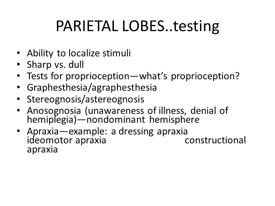 PARIETAL LOBES..testing Ability to localize stimuli Sharp vs. dull Tests for proprioception—what's proprioception? Graphesthesia/agraphesthesia Stereo