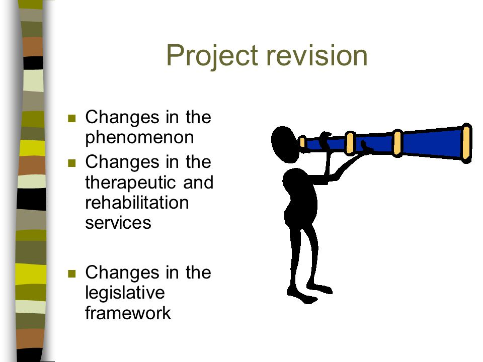 Project revision n Changes in the phenomenon n Changes in the therapeutic and rehabilitation services n Changes in the legislative framework