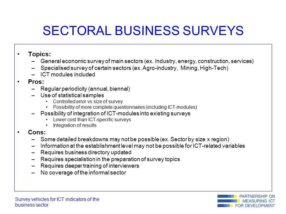 Survey vehicles for ICT indicators of the business sector SECTORAL BUSINESS SURVEYS Topics: –General economic survey of main sectors (ex.