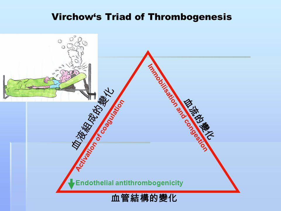 血管結構的變化 Virchow's Triad of Thrombogenesis Endothelial antithrombogenicity 血流的變化 血液組成的變化 Immobilisation and congestion Activation of coagulation
