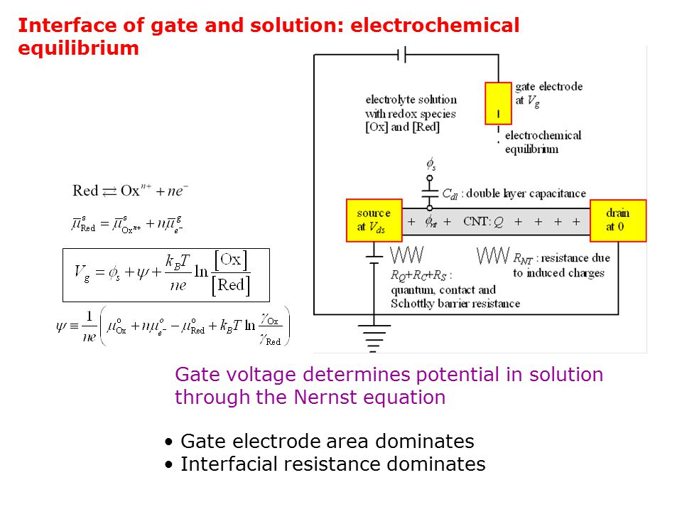 Interface of gate and solution: electrochemical equilibrium Gate electrode area dominates Interfacial resistance dominates Gate voltage determines potential in solution through the Nernst equation