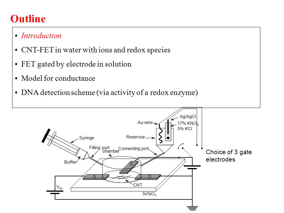 Introduction CNT-FET in water with ions and redox species FET gated by electrode in solution Model for conductance DNA detection scheme (via activity of a redox enzyme) Outline Buffer chamber CNT V sd Si/SiO 2 Filling port S D G Syringe Reservoir Au-wire Ag/AgCl Connecting port 17% KNO 3 5% KCl Choice of 3 gate electrodes