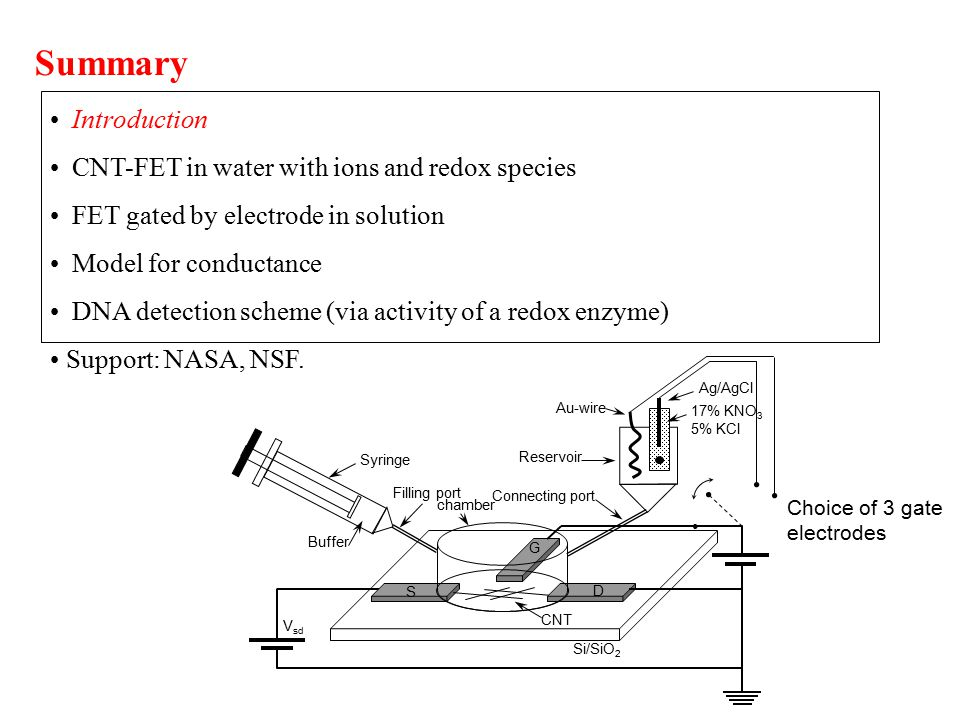 Introduction CNT-FET in water with ions and redox species FET gated by electrode in solution Model for conductance DNA detection scheme (via activity of a redox enzyme) Support: NASA, NSF.