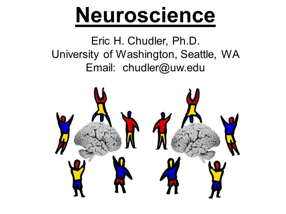 Neuroscience.Why important.