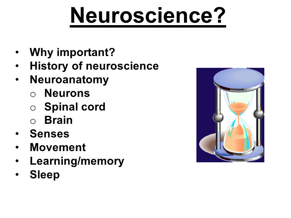 Neuroscience. Why important.