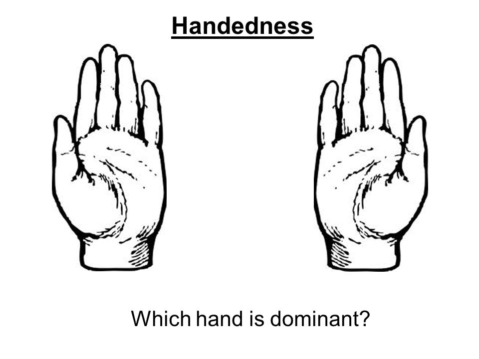 Handedness Which hand is dominant