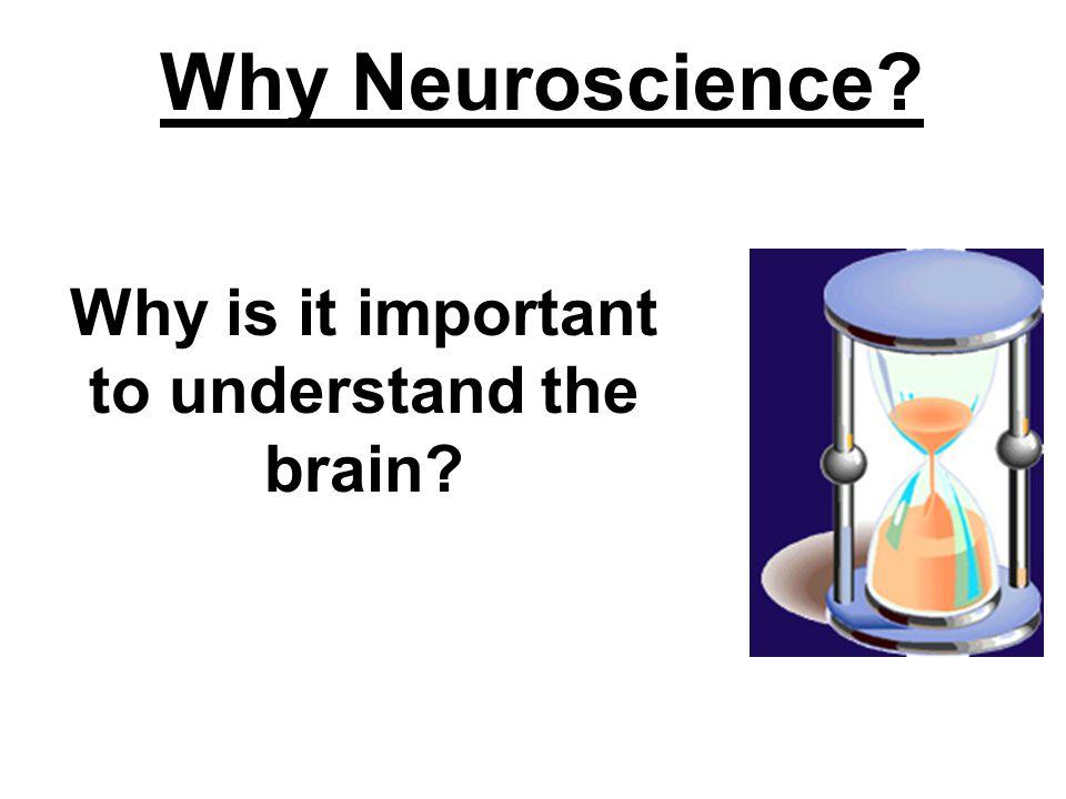Why Study Neuroscience.