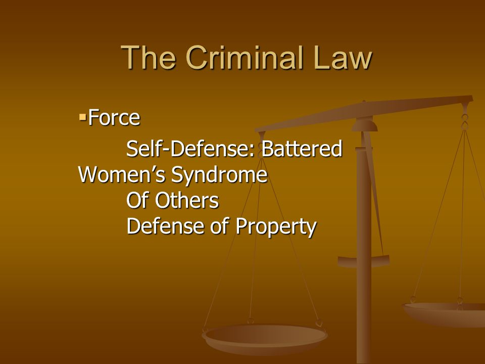 The Criminal Law  Force Self-Defense: Battered Women's Syndrome Of Others Defense of Property