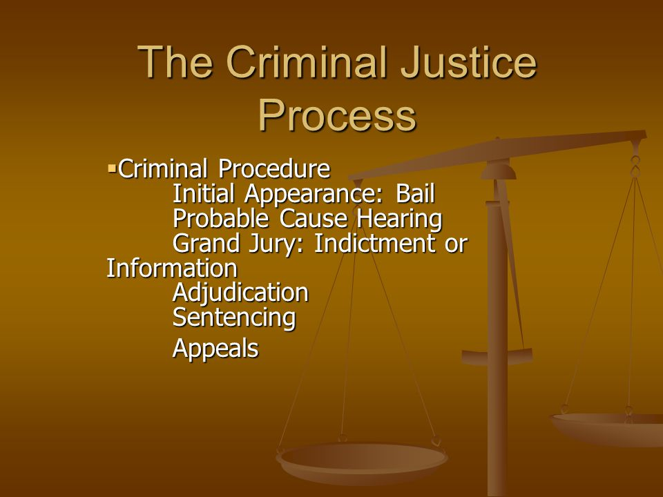 The Criminal Justice Process  Criminal Procedure Initial Appearance: Bail Probable Cause Hearing Grand Jury: Indictment or Information Adjudication Sentencing Appeals