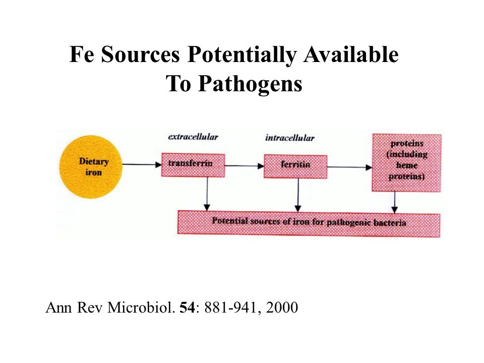 Ann Rev Microbiol. 54: 881-941, 2000 Fe Sources Potentially Available To Pathogens