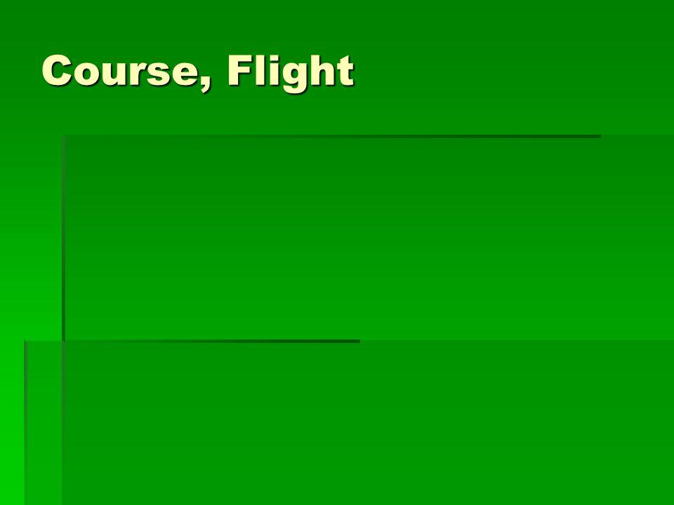 Course, Flight