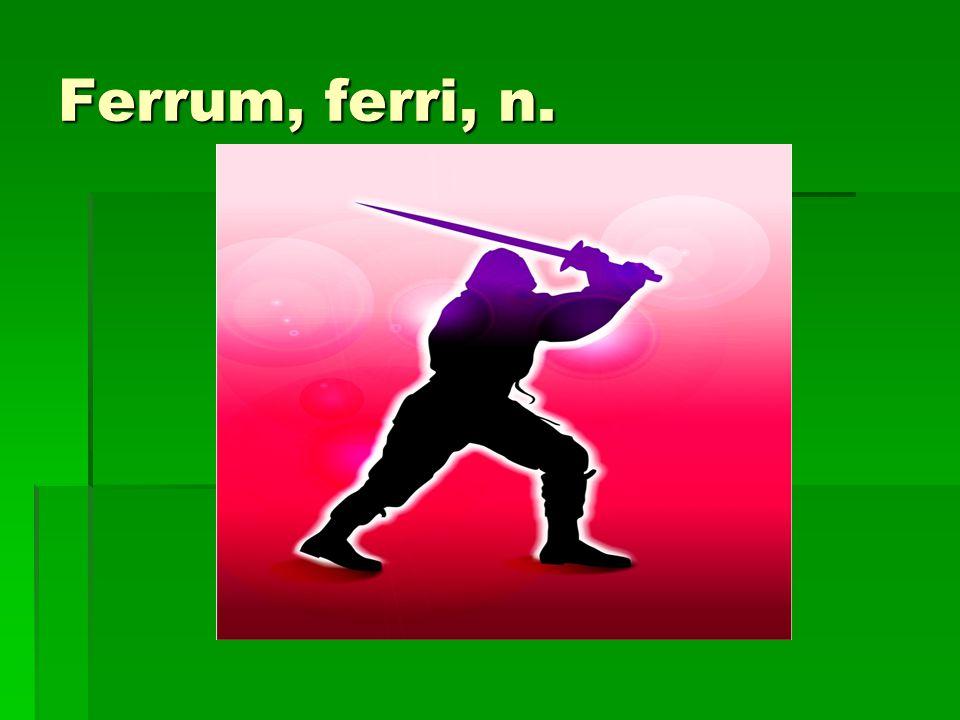 Ferrum, ferri, n.
