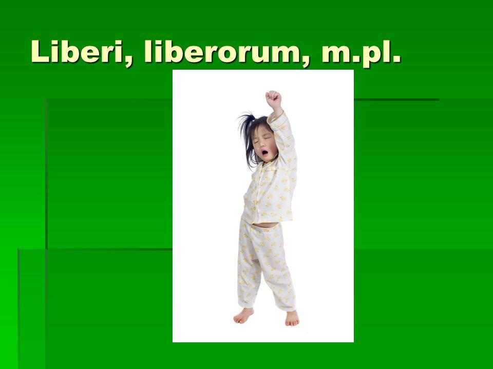 Liberi, liberorum, m.pl.
