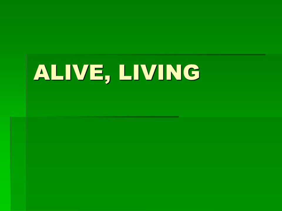 ALIVE, LIVING