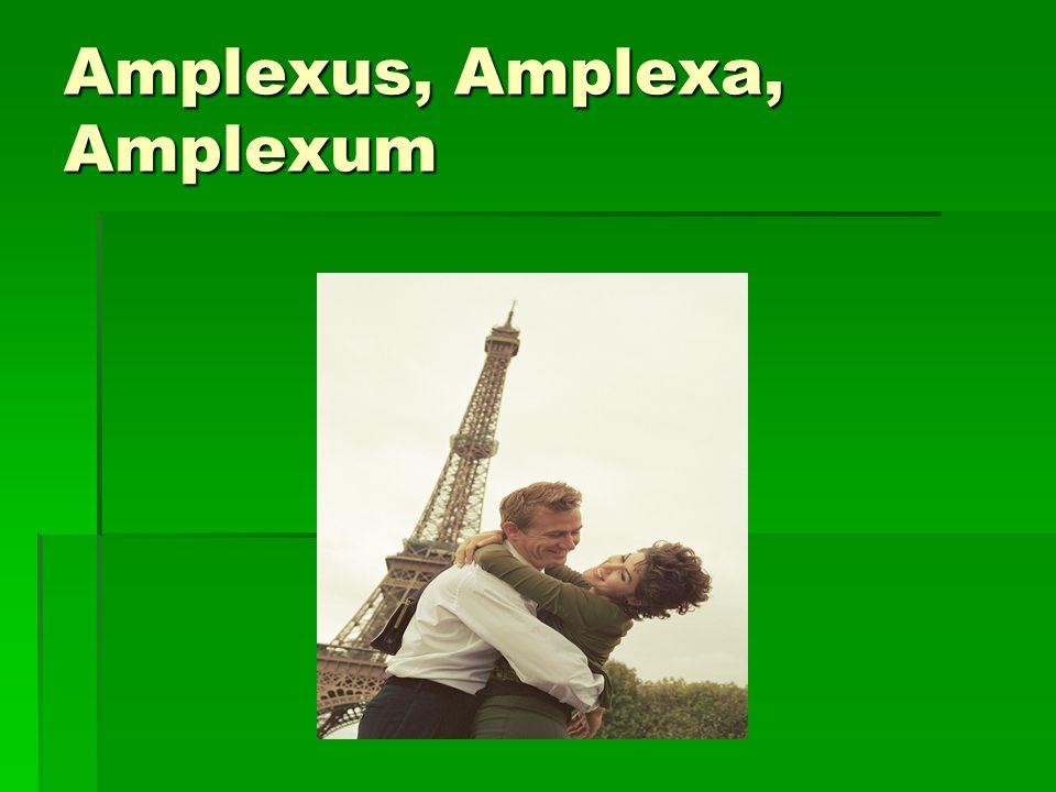 Amplexus, Amplexa, Amplexum