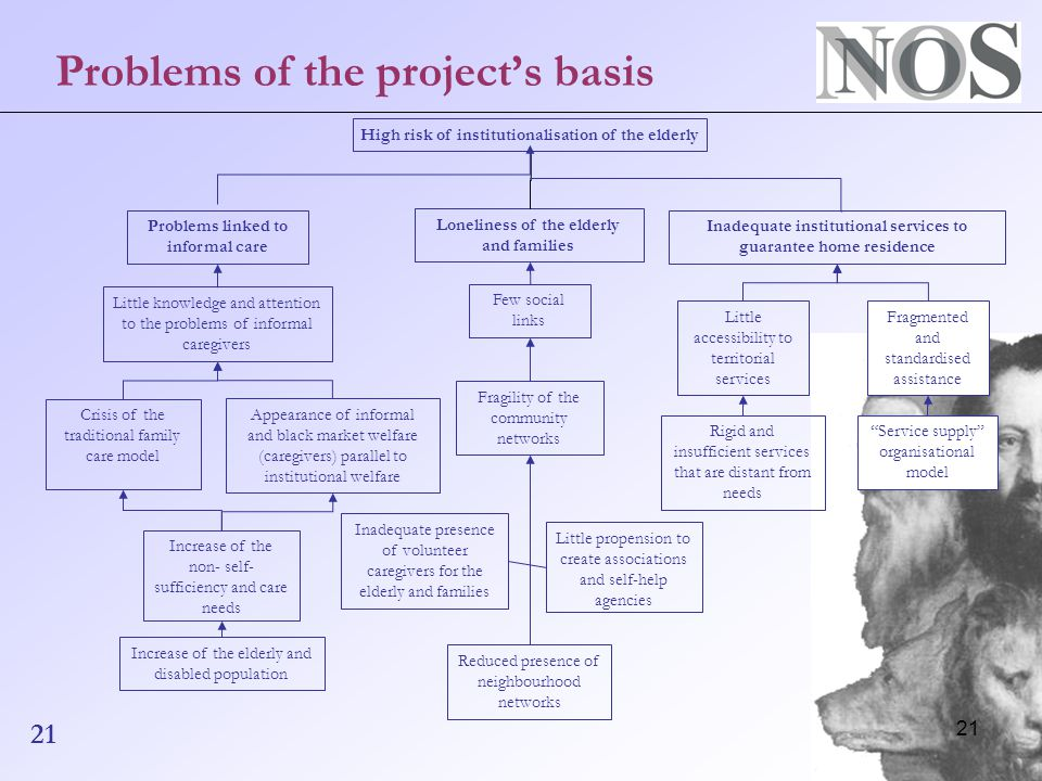 21 Problems of the project's basis High risk of institutionalisation of the elderly Problems linked to informal care Loneliness of the elderly and families Inadequate institutional services to guarantee home residence Little knowledge and attention to the problems of informal caregivers Crisis of the traditional family care model Appearance of informal and black market welfare (caregivers) parallel to institutional welfare Increase of the non- self- sufficiency and care needs Increase of the elderly and disabled population Few social links Fragility of the community networks Inadequate presence of volunteer caregivers for the elderly and families Reduced presence of neighbourhood networks Little propension to create associations and self-help agencies Little accessibility to territorial services Service supply organisational model Rigid and insufficient services that are distant from needs Fragmented and standardised assistance 21