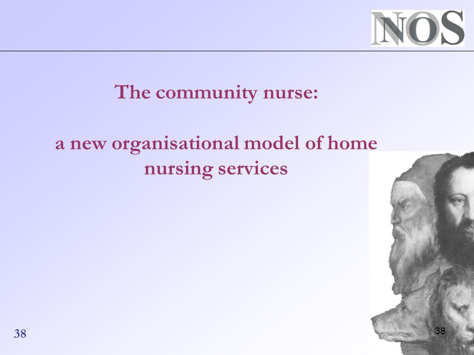 38 The community nurse: a new organisational model of home nursing services 38