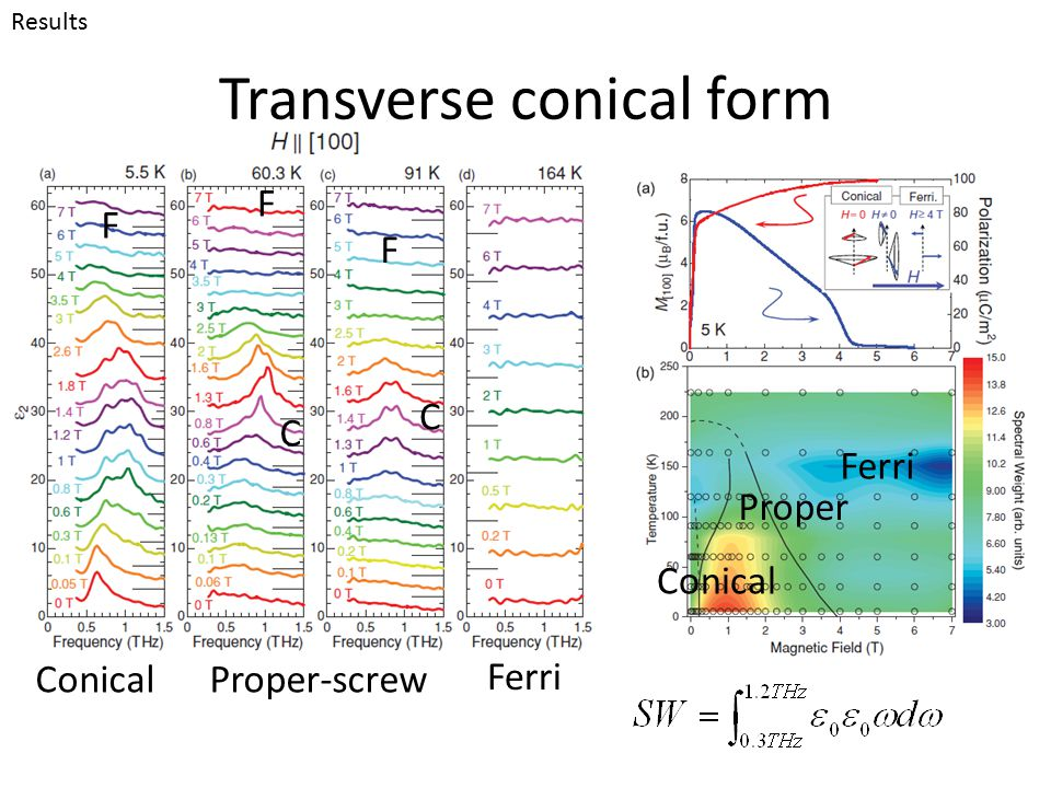 Transverse conical form Results Conical Proper Ferri Proper-screwConical Ferri F C C F F