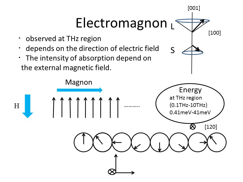 Electromagnon ……….. H Magnon Energy at THz region (0.1THz-10THz) 0.41meV-41meV ・ observed at THz region ・ depends on the direction of electric field ・