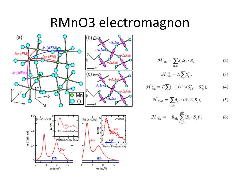 RMnO3 electromagnon