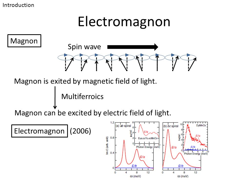 Electromagnon Magnon can be excited by electric field of light. Magnon Introduction Spin wave Magnon is exited by magnetic field of light. Multiferroi