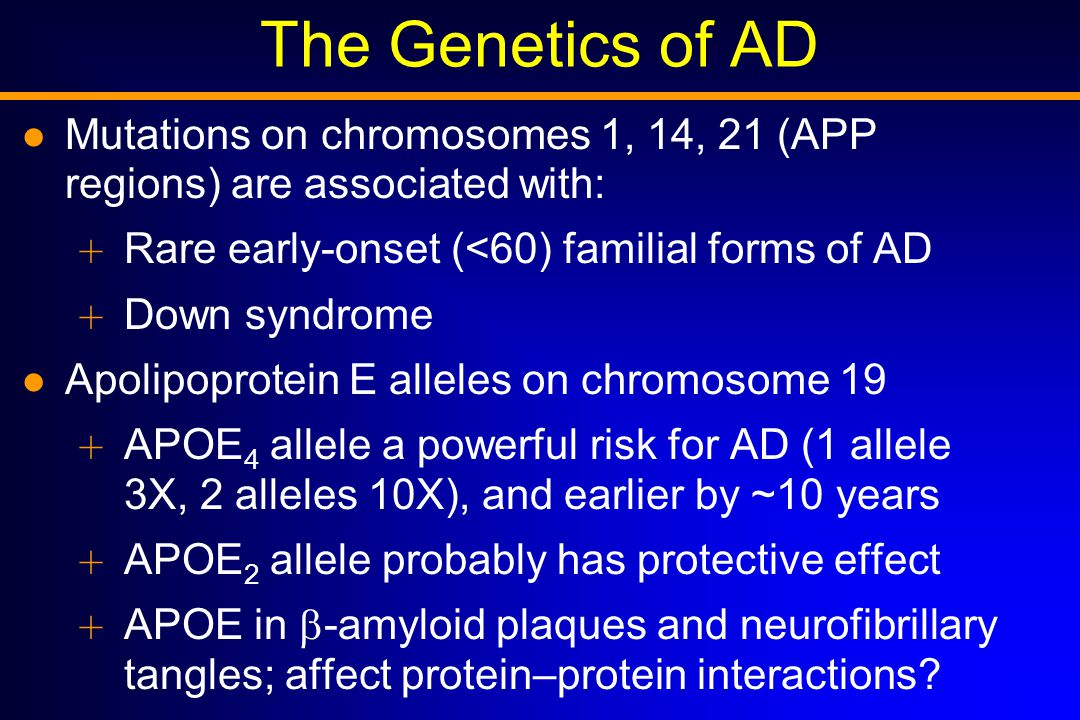 The Genetics of AD Mutations on chromosomes 1, 14, 21 (APP regions) are associated with:  Rare early-onset (<60) familial forms of AD  Down syndrome Apolipoprotein E alleles on chromosome 19  APOE 4 allele a powerful risk for AD (1 allele 3X, 2 alleles 10X), and earlier by ~10 years  APOE 2 allele probably has protective effect  APOE in  -amyloid plaques and neurofibrillary tangles; affect protein–protein interactions