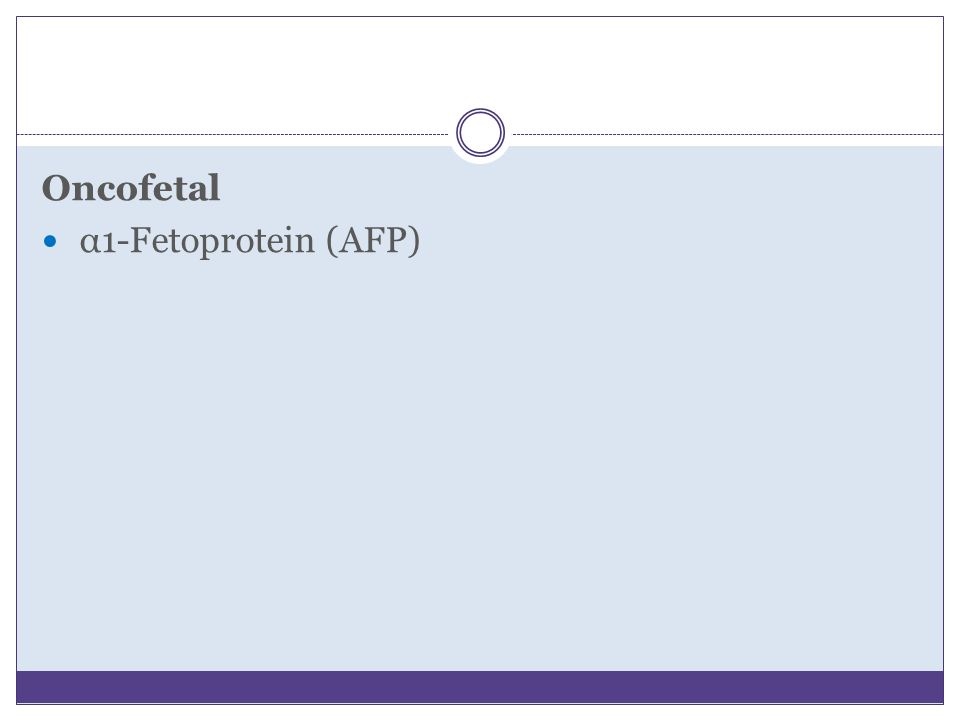 Oncofetal α1-Fetoprotein (AFP)