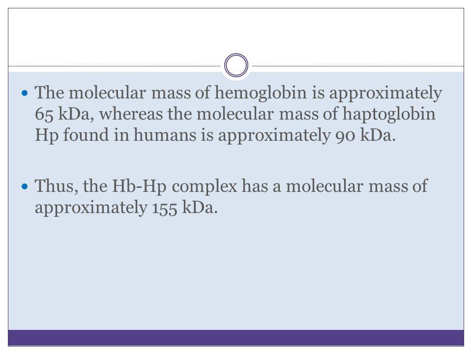 The molecular mass of hemoglobin is approximately 65 kDa, whereas the molecular mass of haptoglobin Hp found in humans is approximately 90 kDa. Thus,