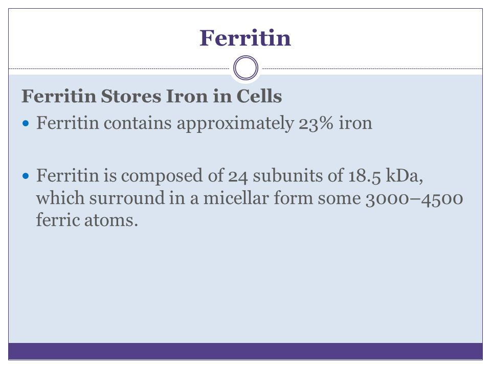 Ferritin Ferritin Stores Iron in Cells Ferritin contains approximately 23% iron Ferritin is composed of 24 subunits of 18.5 kDa, which surround in a m