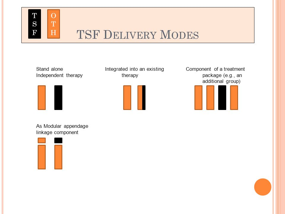 TSF D ELIVERY M ODES Stand alone Independent therapy Integrated into an existing therapy Component of a treatment package (e.g., an additional group) As Modular appendage linkage component TSFTSF OTHOTH