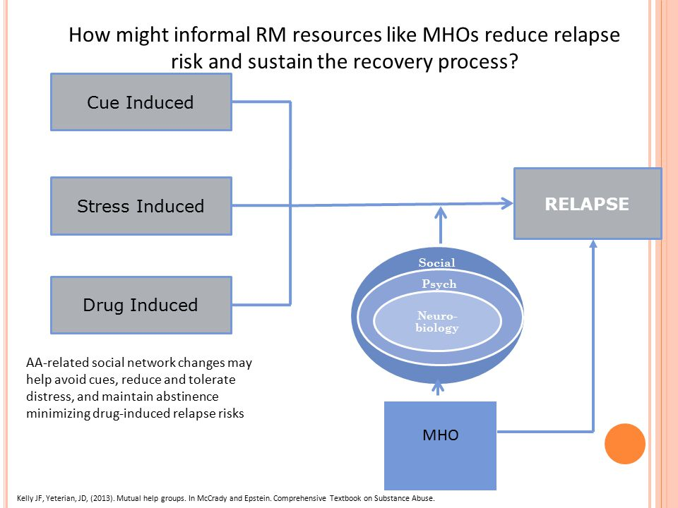 RELAPSE Cue Induced Stress Induced Drug Induced How might informal RM resources like MHOs reduce relapse risk and sustain the recovery process.