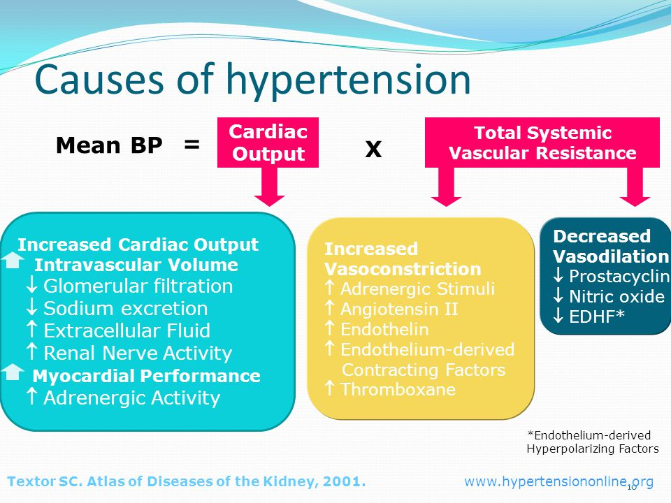 10 Causes of hypertension = Increased Cardiac Output Intravascular Volume  Glomerular filtration  Sodium excretion  Extracellular Fluid  Renal Nerve Activity Myocardial Performance  Adrenergic Activity Increased Vasoconstriction  Adrenergic Stimuli  Angiotensin II  Endothelin  Endothelium-derived Contracting Factors  Thromboxane Decreased Vasodilation  Prostacyclin  Nitric oxide  EDHF* Textor SC.