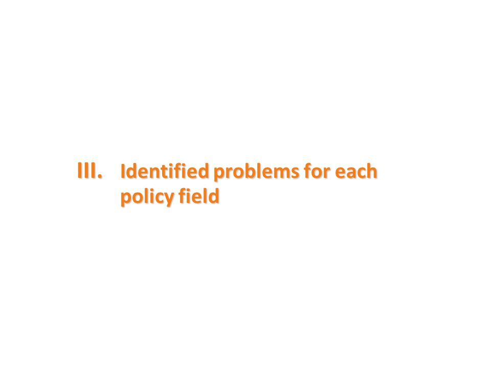 III. Identified problems for each policy field
