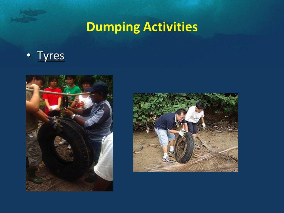 Dumping Activities Tyres Tyres