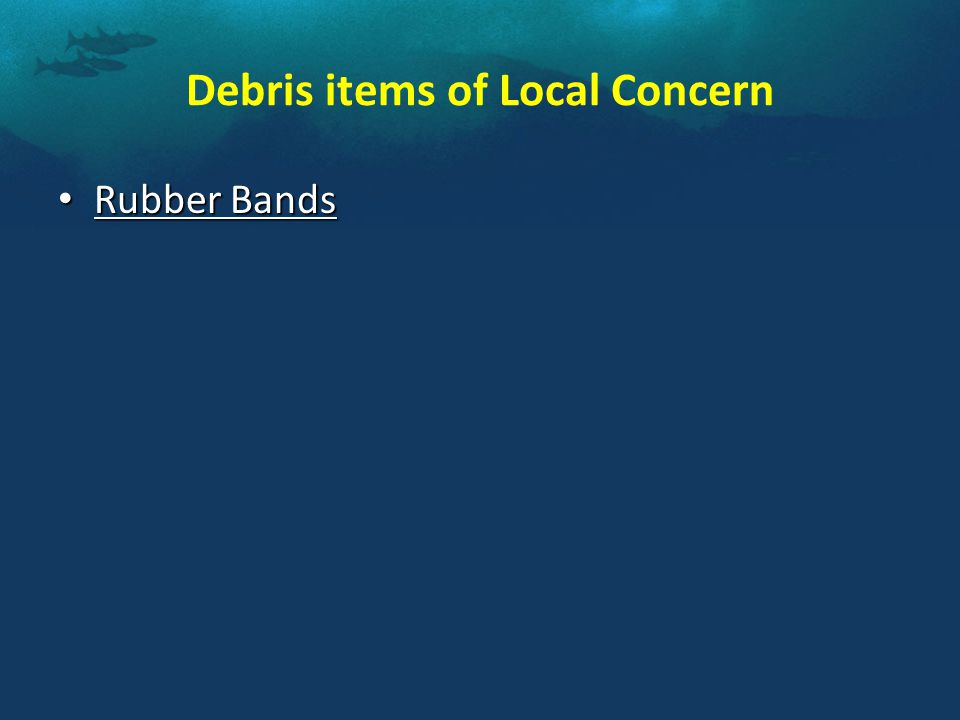 Debris items of Local Concern Rubber Bands Rubber Bands
