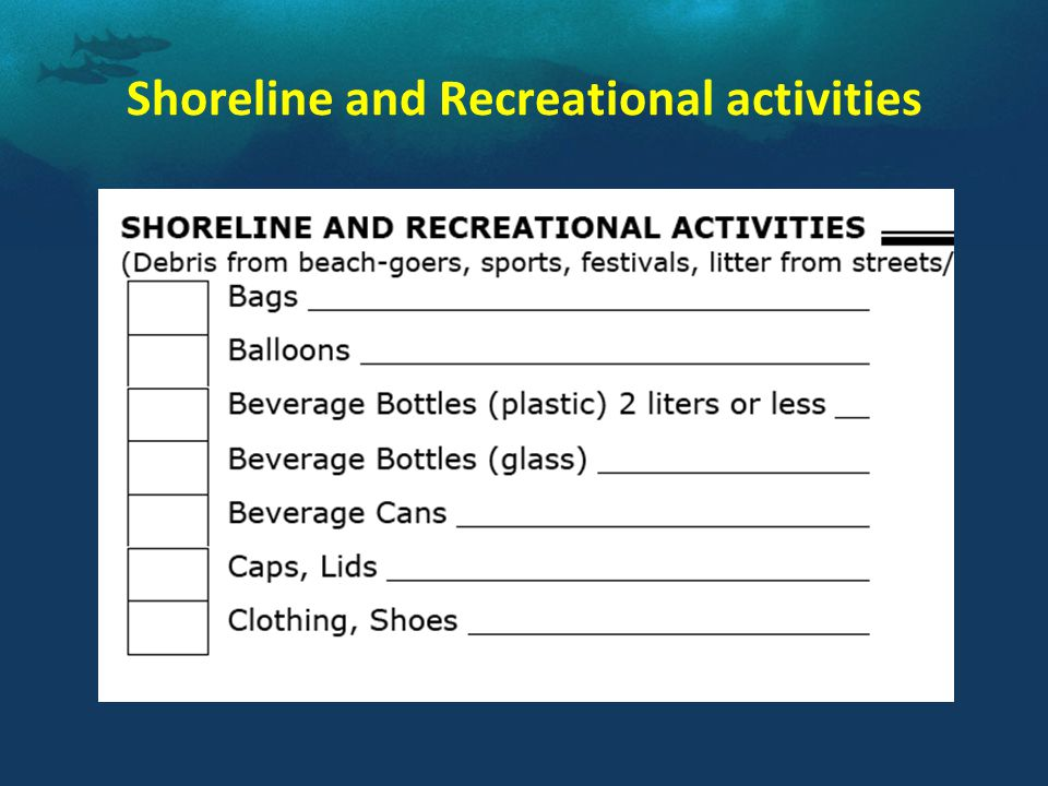 Shoreline and Recreational activities