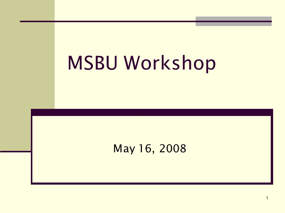 1 MSBU Workshop May 16, 2008
