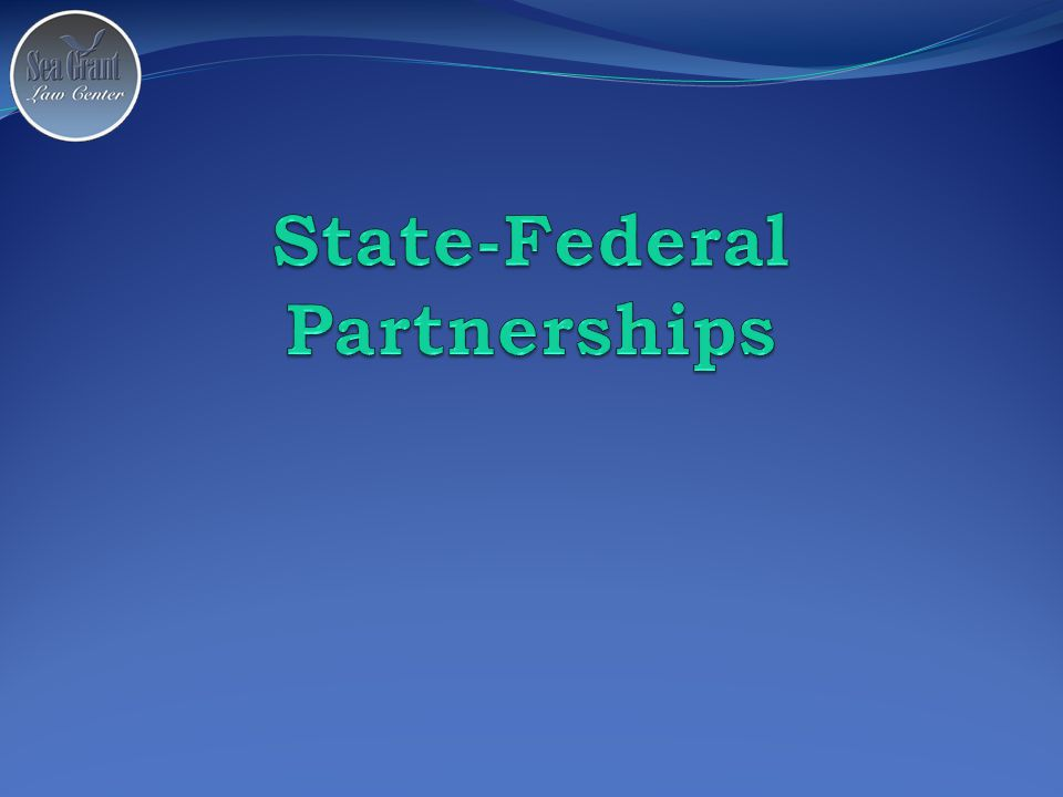 State-Federal Partnerships The other category Unique agencies created and funded (for the most part) by Congress.