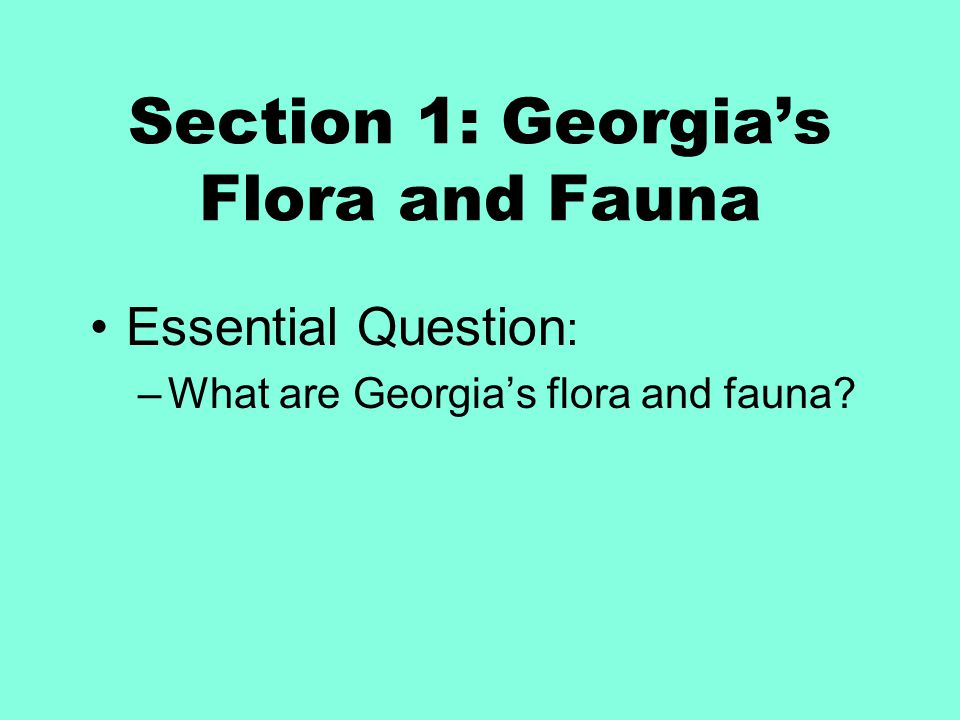 Section 1: Georgia's Flora and Fauna Essential Question : –What are Georgia's flora and fauna