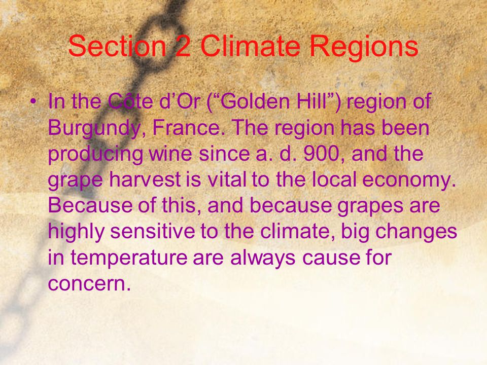 """Section 2 Climate Regions In the Côte d'Or (""""Golden Hill"""") region of Burgundy, France. The region has been producing wine since a. d. 900, and the gra"""