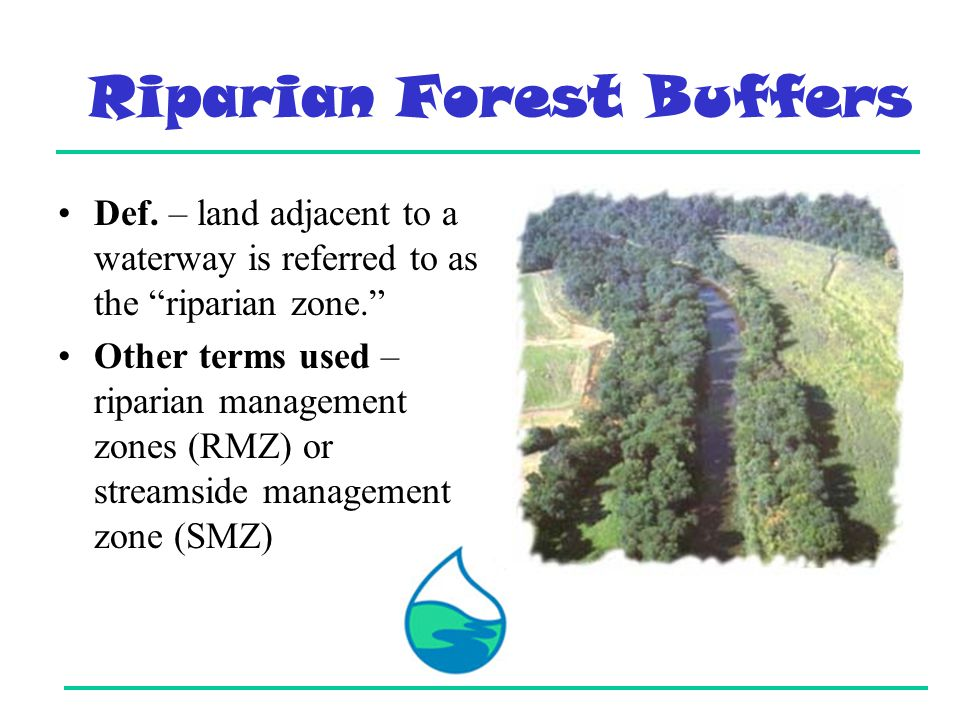 Riparian Forest Buffers Def.